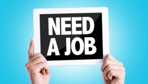 nose job recovery blog